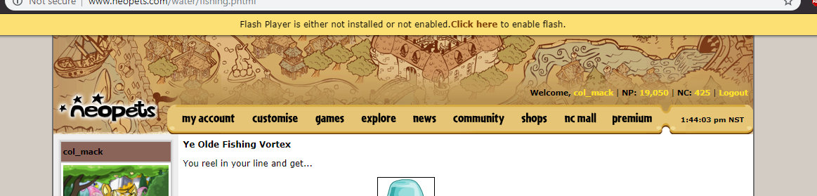 Is this a glitch, or just my computer being wonky? - Neopets