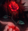 A Bloodied Rose